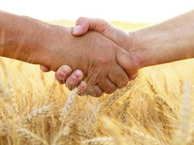 Борсата за зърно на новото време -Икономика